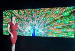 LA TECNOLOGIA MICRO LED DI LG  SI AGGIUDICA IL PRESIDENTIAL AWARD ALL'INTERNATIONAL LIGHT CONVERGENCE EXPO 2021